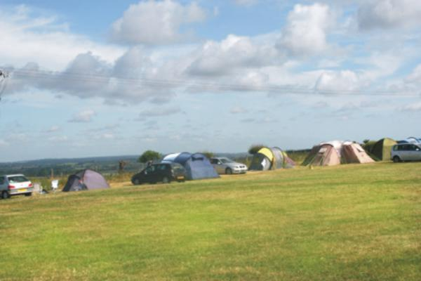 Town Farm Camping & Caravanning 10167