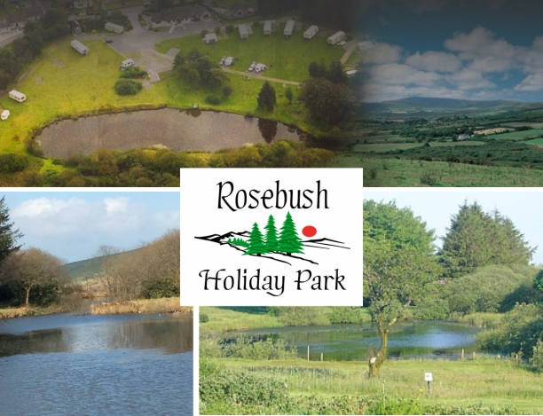 Rosebush Holiday Park 11982