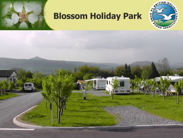 Blossom Holiday Park 13551