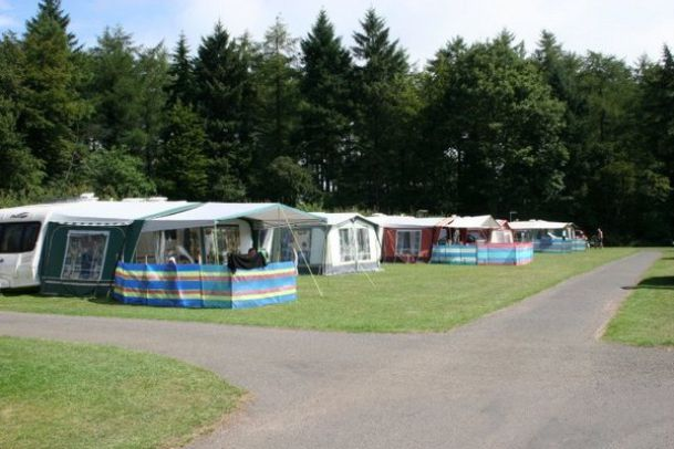 Forest Glade Holiday Park 13639