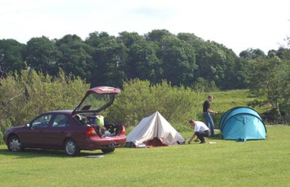 Brompton on Swale Caravan and Camping Park 14230