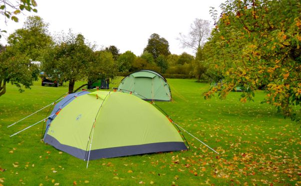 Low Farm Touring & Camping Park 15454