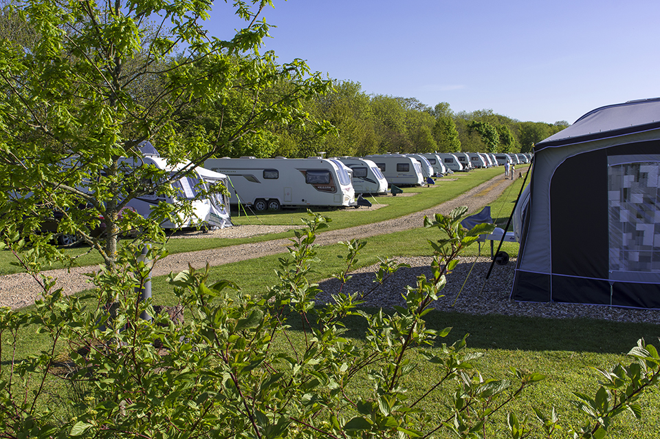 Oakdown Touring and Holiday Caravan Park 16971
