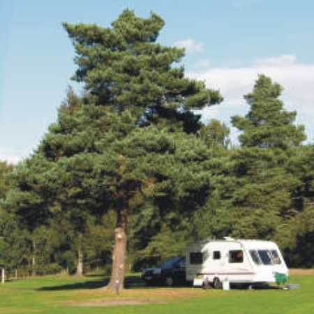Holme Valley Camping and Caravan Park 9227